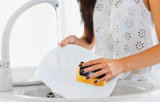 VegeWash Liquid Castile Vegan Dish Washing Soap